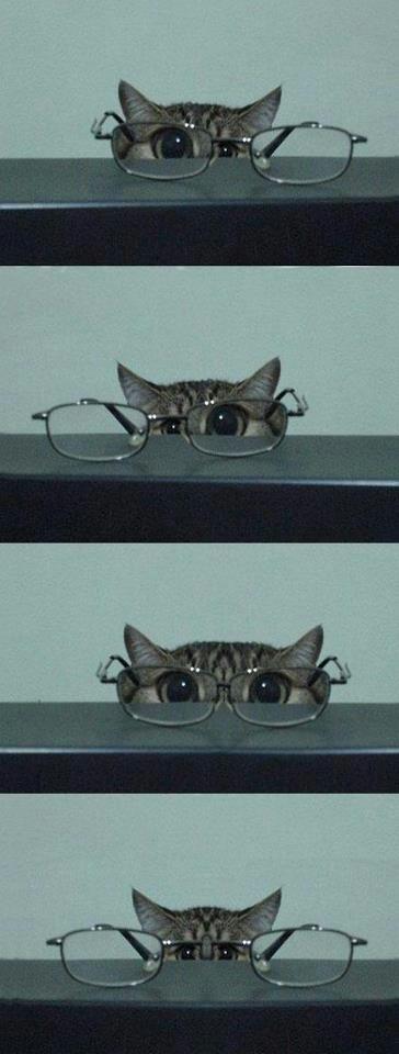 Mimasu-To see.  見ます