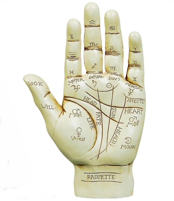 Palmistry shows how your entire life is mapped out in the palm of your hands. Even Julius Caesar used palmistry to help him make decisions. The future is read in your right hand and the past in your left hand. The hand revealing your past gives information about the inner you and the influences in your life when you were growing up.