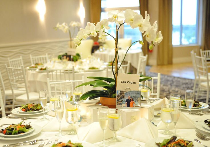 Best 25 potted orchid centerpiece ideas on pinterest for Wedding reception centrepieces
