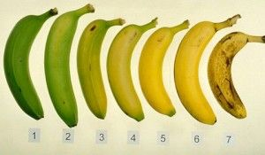 7 soiuri incredibile de banane | inauntru.ro