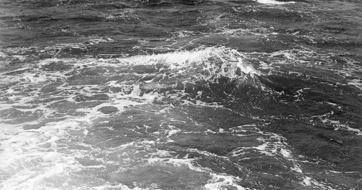 Características del mar abierto. El piélago o mar abierto es el lugar más salvaje de la Tierra: desde sus aguas superficiales iluminadas por el sol hasta sus negras y aplastantes profundidades, es un enorme desierto de corrientes irregulares, donde anda el plancton a la deriva y los tiburones se atraviesan. Los marineros lo cruzan con éxito sólo con el sentido de de la más ...