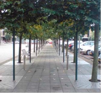 25 spraakmakende idee n over het planten van bomen op pinterest accentbomen tuinbloemen en - Creeren van een tuin allee ...
