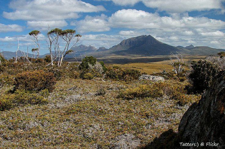 View to the mountains. Tasmania Overland track.