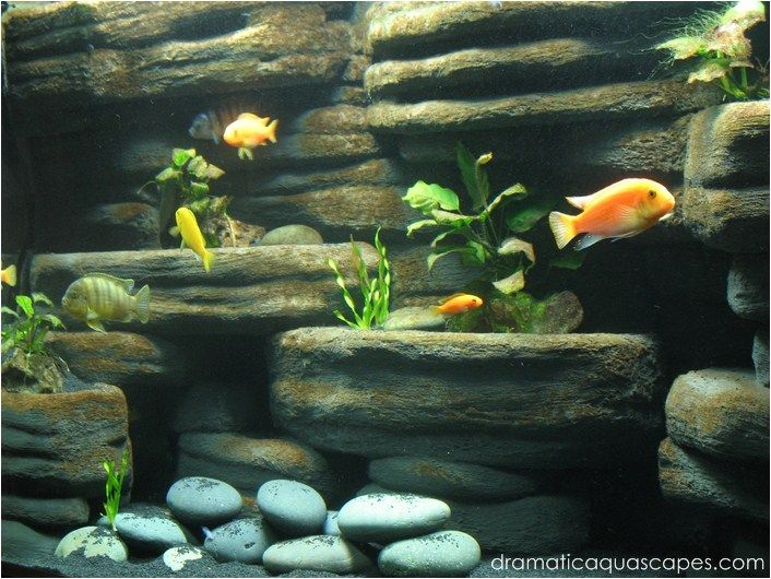 DIY Aquarium Background   Rock Ledges