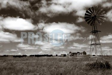 Photographic art by Therina Groenewald
