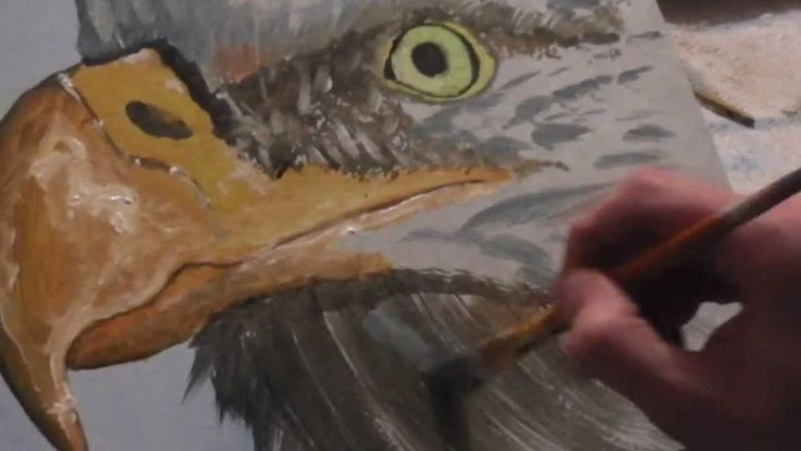 Eagle Beginners Painting Tutorial HD | Painting YouTube ...
