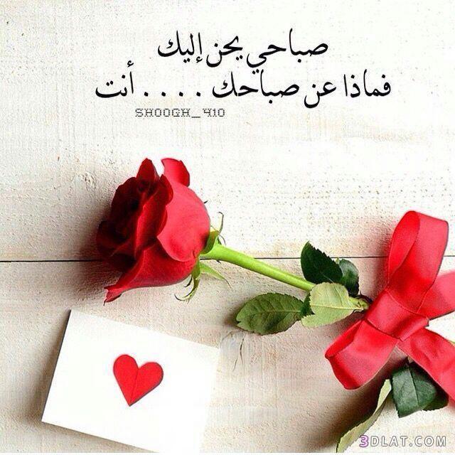 صور حب صور شوق اروع صور العشاق 2019 Love Words Calligraphy Quotes Love Valentine Messages