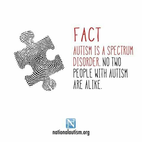 Just as no two people are alike.  Cannot use a cookie cutter approach to with people with autism.