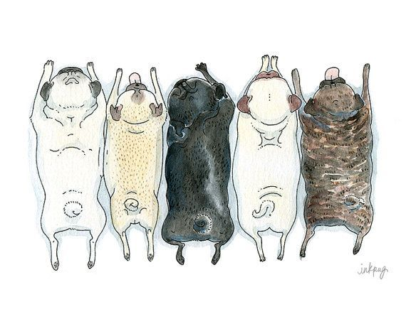 Pug Art Print Roll Call Fawn Brindle and Black Pugs in by InkPug, $10.00