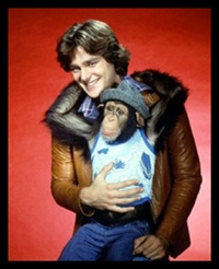 1970's Male Teen Idols BJ and the Bandit: Friends Bears, 1970S Legends, 8X10 Glossy, Greg Evigan, Bears Greg, Movie Stars, Glossy Photos, Evigan 8X10, 1970S Male