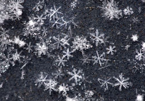 real snowflakes background - photo #47