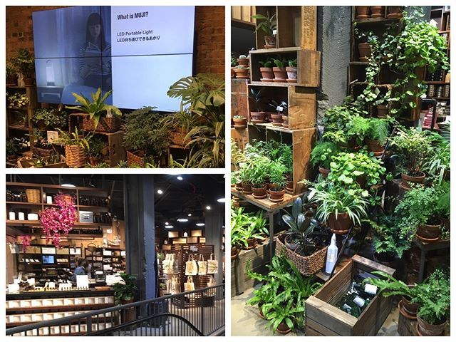 Muji a shop in New York City with plants and realexing products like yoga clothes, body care #wellbeing #realex #plantsincity #calmdown #nature #slowdown #happygreencity #newyork #nyc #trendspotting #planttrends