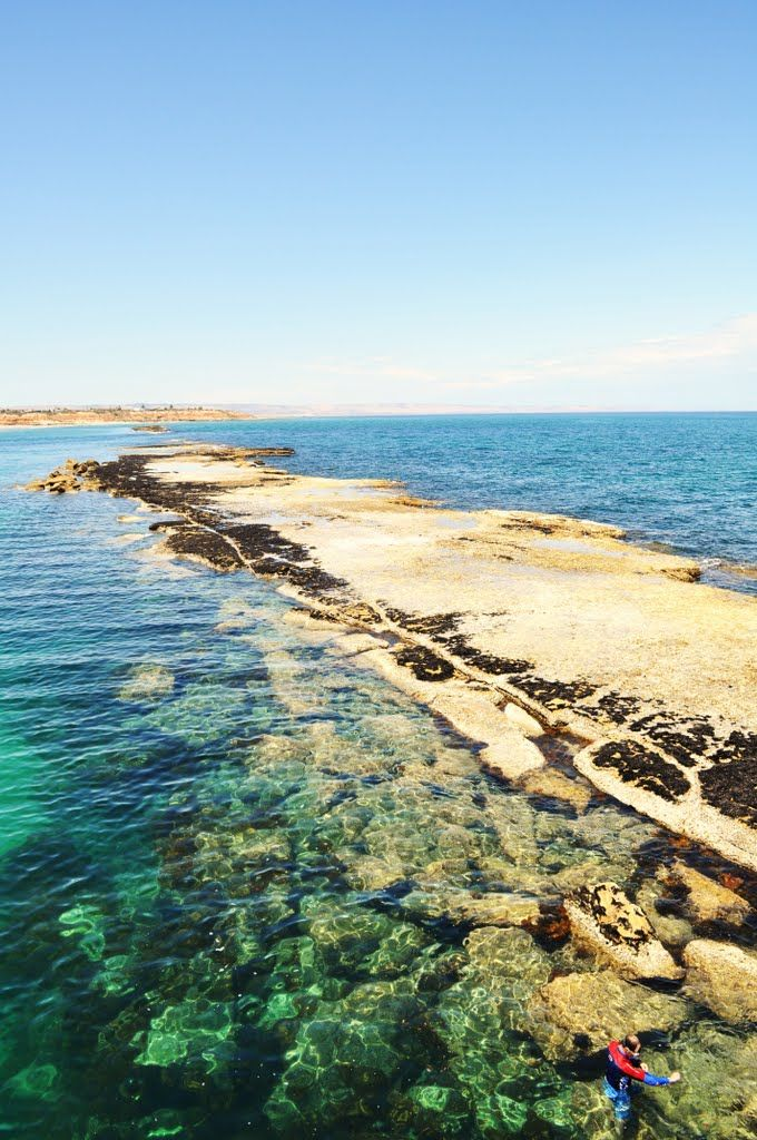 Port Noarlunga Reef, South Australia