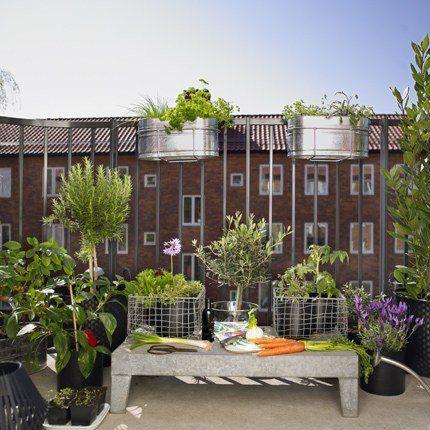 Je crée un jardin sur mon balcon - Marie Claire Maison