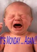 Happy Monday! But this baby doesn't seem too pleased!  #monday #isitfridayyet? #funnybaby #punkinwrap #babymemes