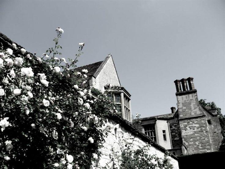 Angelsey Abbey, Rose Garden