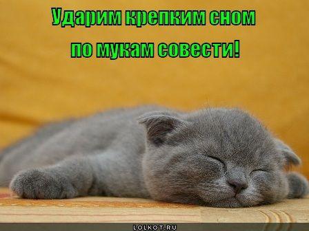 krepkiy-son_1336918433 (448x336, 52Kb)
