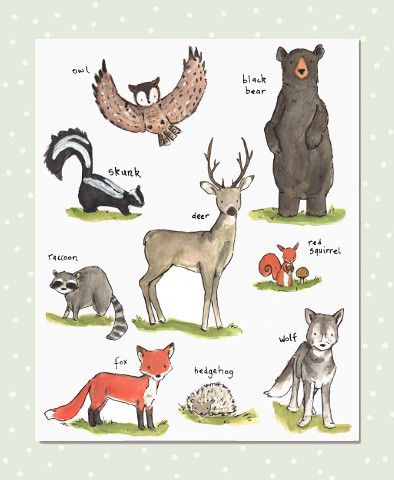 Start your young explorer early with this collection of baby's favorite forest friends. - art print from an original watercolor, gouache, and acrylic painting by Kit Chase. - archival matte paper and