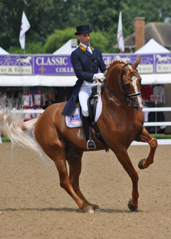 how to do a flying change in dressage