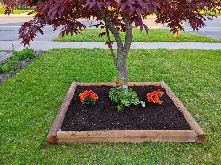 Diy Curb Appeal Landscaping Idea In 2020 Japanese Maple Tree Diy Raised Garden Flower Boxes