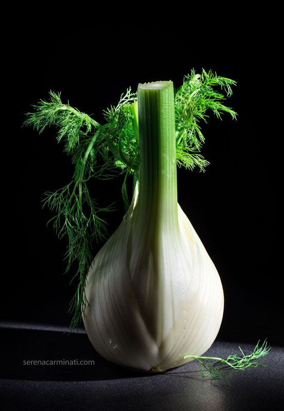 Still life with fennel on dark background with low-key side lighting. Part of a personal project, published on foodfulife.com