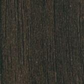 Modecor Exotic walnut