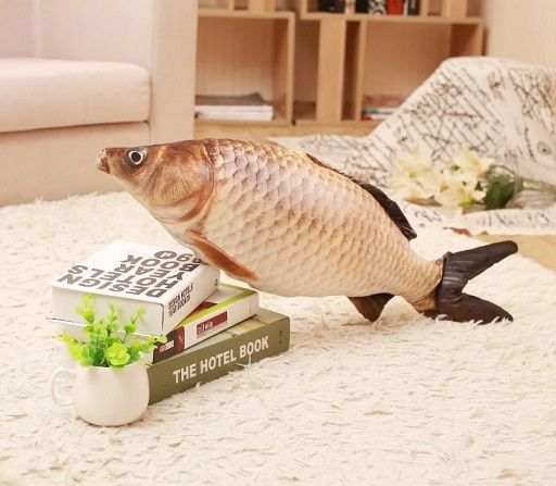 $21.99 (Buy here: https://alitems.com/g/1e8d114494ebda23ff8b16525dc3e8/?i=5&ulp=https%3A%2F%2Fwww.aliexpress.com%2Fitem%2FNew-3D-Grass-Carp-Pillow-Stuffed-Plush-Simulation-Animal-Fish-Toy-Big-Classic-100cm-40inch-1pcs%2F32741215213.html ) New 3D  Grass Carp Pillow Stuffed Plush Simulation Animal Fish Toy Big Classic 100cm 40inch 1pcs Children Lovers Birthday Gift for just $21.99