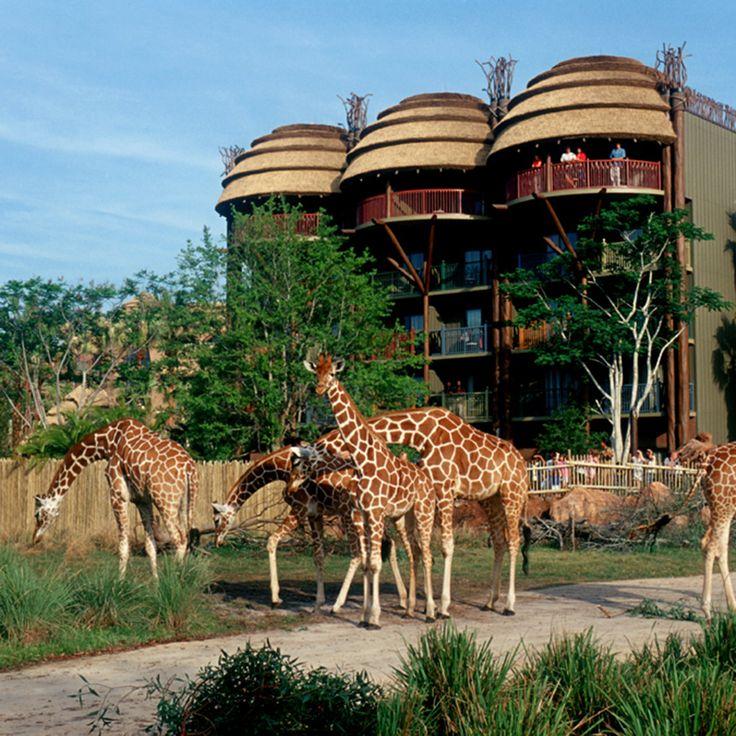 5 Best Disney World Hotels in Orlando