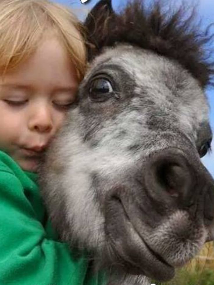 #HORSE##CUT##PETS# #BEST FRIEND#