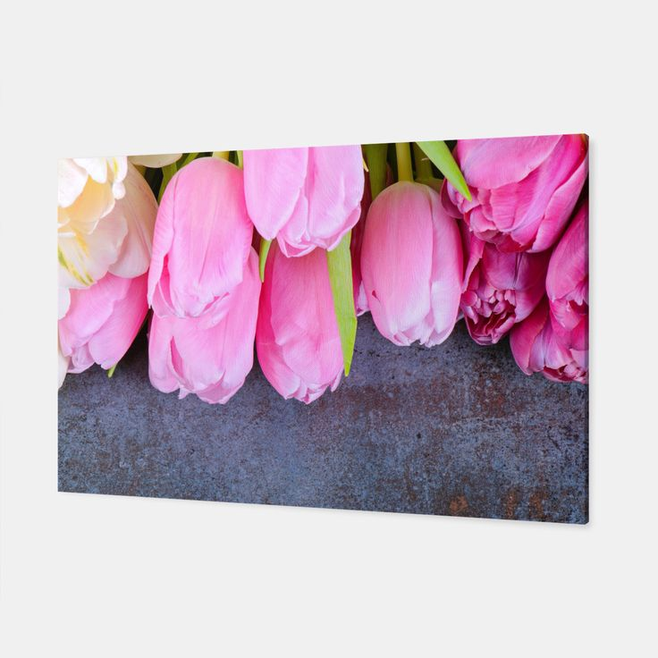 Fresh pink tulips on gray stone background Canvas, Live Heroes