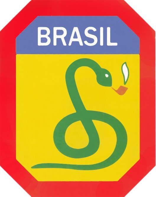 A cobra fumou! A frase que dizia que seria mais fácil uma cobra fumar cachimbo do que o Brasil participar da guerra foi muito repetida antes do país enviar 25 mil pracinhas para lutar ao lado dos Aliados contra o nazismo e o fascismo, durante a Segunda Guerra Mundial. Foi a partir daí que surgiu o símbolo da FEB, a cobra fumando cachimbo.
