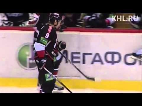 Hockey, Ilya Bryzgalov.