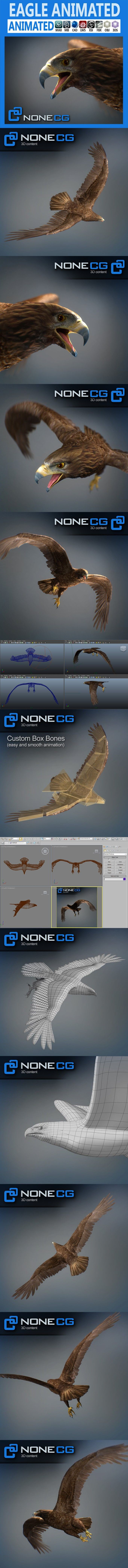 Animated Golden Eagle. 3D Animals