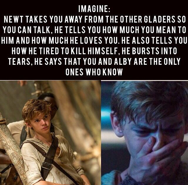 Why must people make these! Like oh my gosh, where is the fan fiction at for newt???? Lol