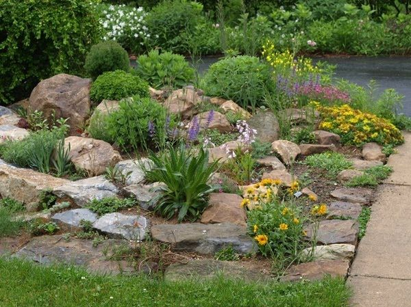 Rock Garden With Large Plants   Google Search