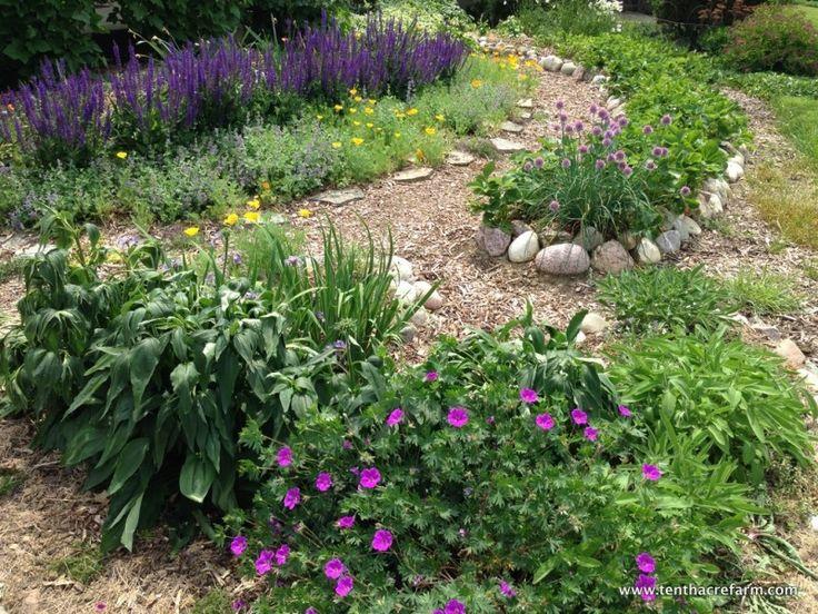 27 best edible landscaping images on pinterest backyard ideas