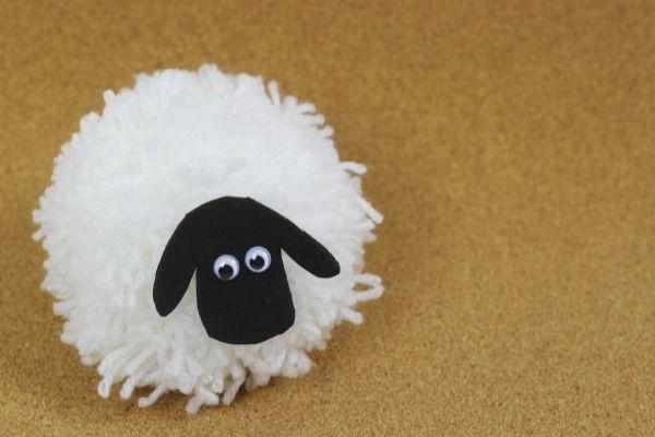 pompom sheep 5