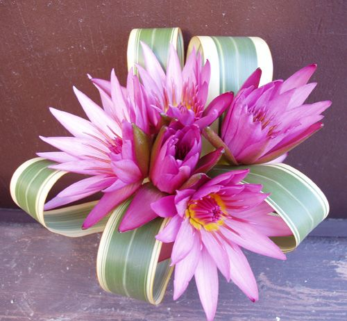 Pink Water Lily Bouquet BouquetFlower BouquetsWedding BouquetsFlower WeddingLotus
