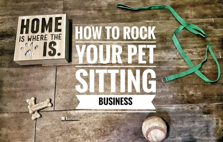 Thinking about starting your own pet sitting business?  With these simple tips you can make sure you ROCK your pet sitting business!
