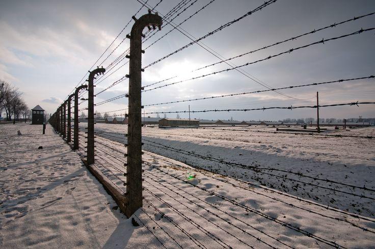 Olocausto - Memoria