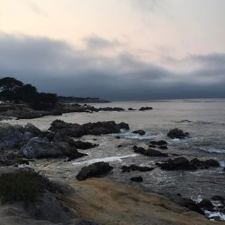 Over on HBG I am sharing all about Monterey and what is realfake on the biglittlelies version of my hometown