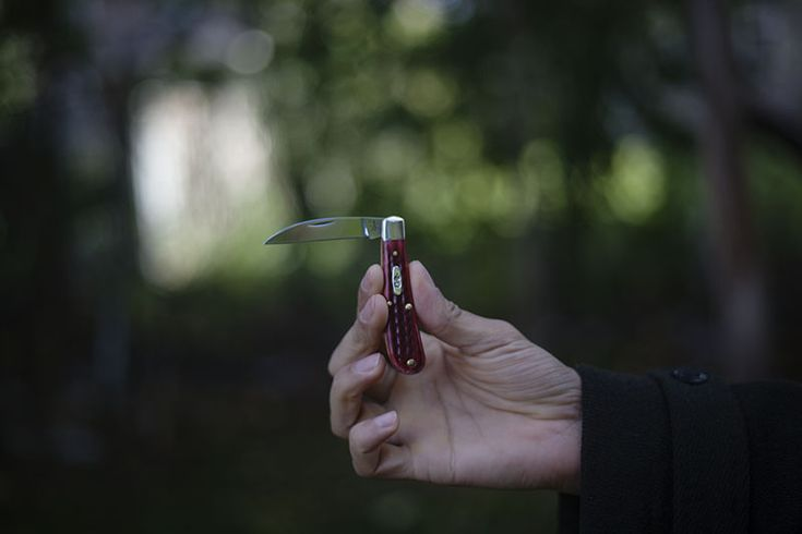 Case Sway Back Gent Red Bone Pocket Knife Review