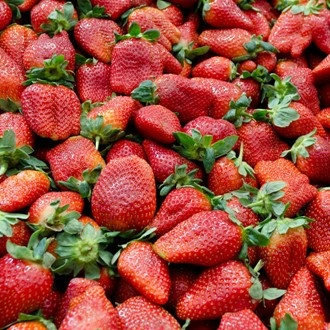 Strawberries - Strawberries go one better than raspberries. Much like ...