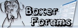 Boxer Forum : Boxer Breed Dog Forums