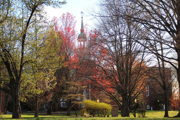 https://flic.kr/p/GmbUmf | Spring Foliage | Parker Auditorium engulfed in spring at Hanover College, Indiana.