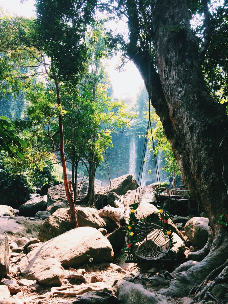 I walked into a storybook. Approaching a waterfall in Phnom Kulen National Park, Cambodia. // (c) Jenny Lam 2016 // #travel #photography #travelphotography #city #photos #asia #nature #trees #forest #mountain #light #sun #sunlight #swing #swings