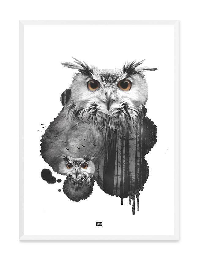 Forest Owl Print - Wall Art