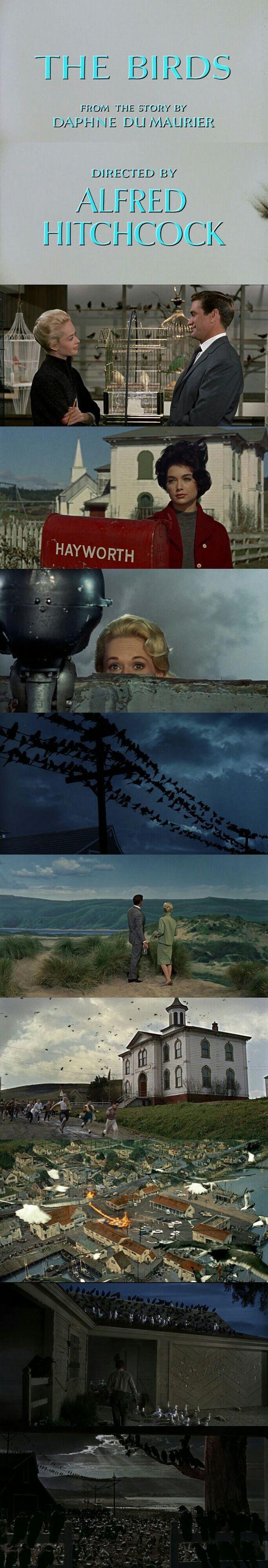 Cenas do filme Os Pássaros, de Alfred Hitchcock. 10 filmes de terror. O cinema disposto em todas as suas formas. Análises desde os clássicos até as novidades que permeiam a sétima arte. Críticas de filmes e matérias especiais todos os dias. #filme #filmes #clássico #cinema #ator #atriz