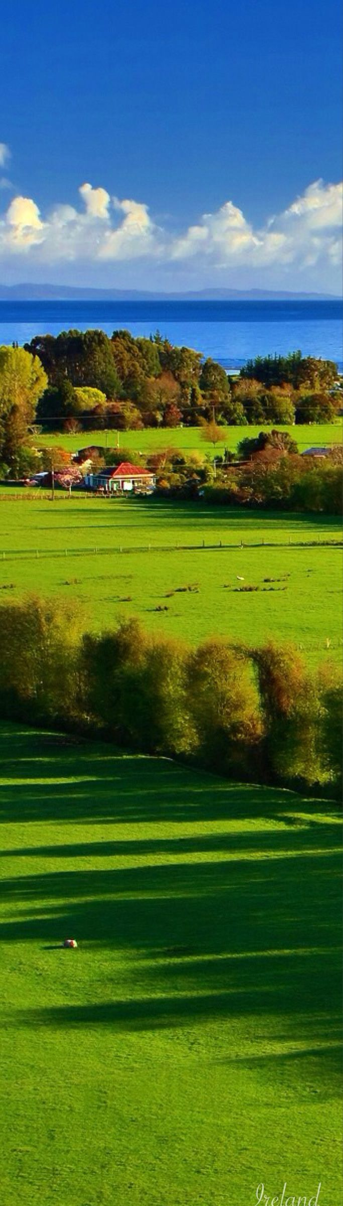 Ireland's lush green landscape. How can anyone help but fall in love with this?
