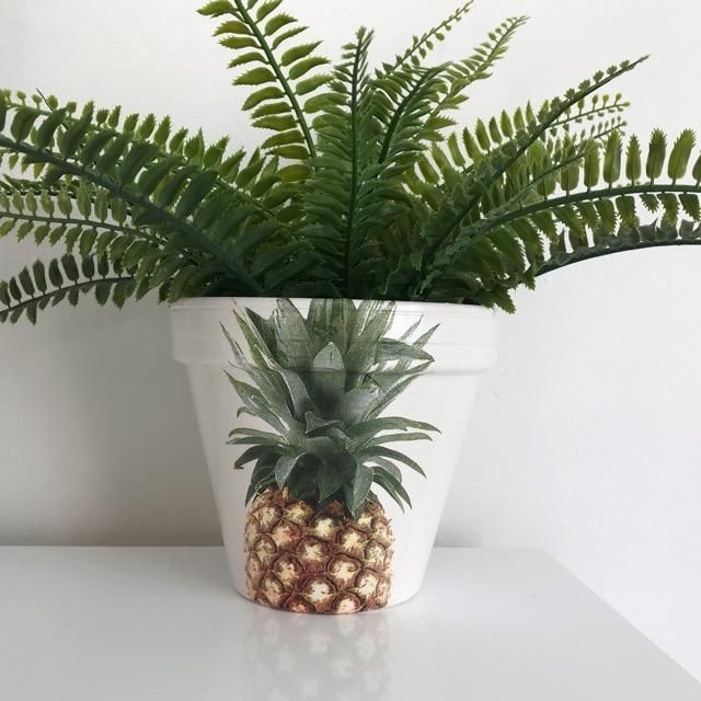 Classic Pineapple Terracotta Medium Plant Pot
